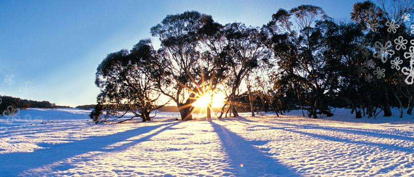 Kết quả hình ảnh cho mùa đông ở úc
