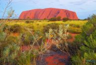 Nhưng điểm đến không thể bỏ lỡ khi du lịch Úc