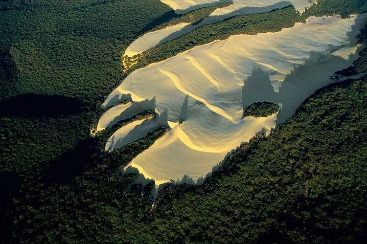 Tới Australia, thăm cồn cát trên đảo Fraser - 1