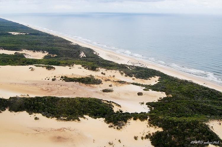 Tới Australia, thăm cồn cát trên đảo Fraser - 11
