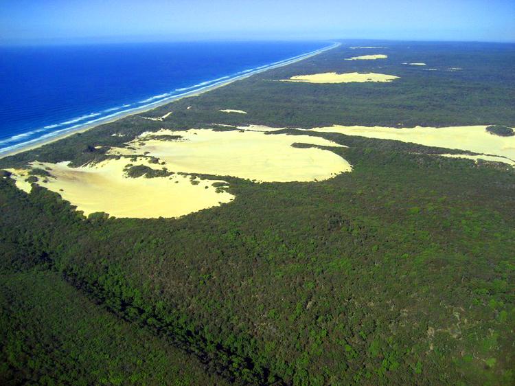 Tới Australia, thăm cồn cát trên đảo Fraser - 4