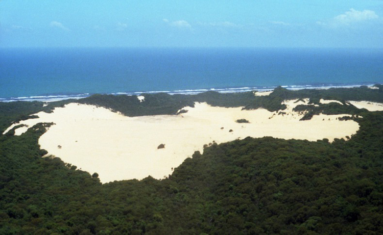 Tới Australia, thăm cồn cát trên đảo Fraser - 5