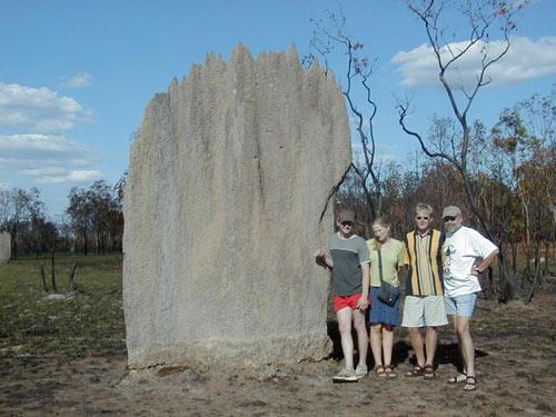 Nghĩa địa mối khổng lồ ở Australia - 7